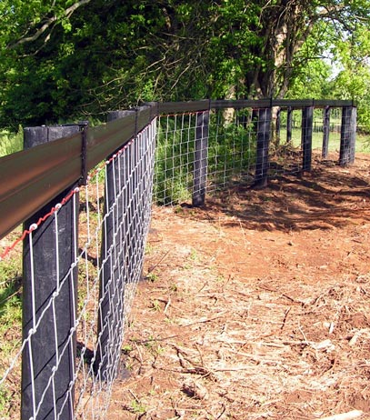 We can even make cattle wire look great!